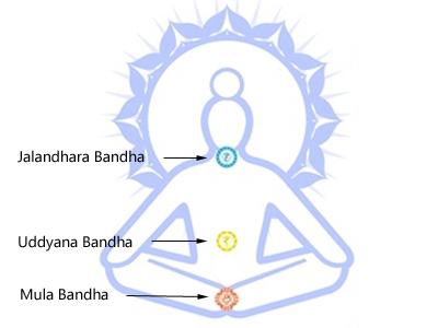 Yoga-Bandhas