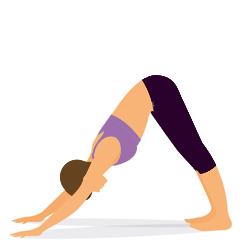 Yoga Uebung herabschauende Hund