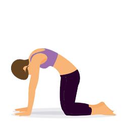 Yoga Uebung Katze